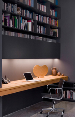 Office with book shelves
